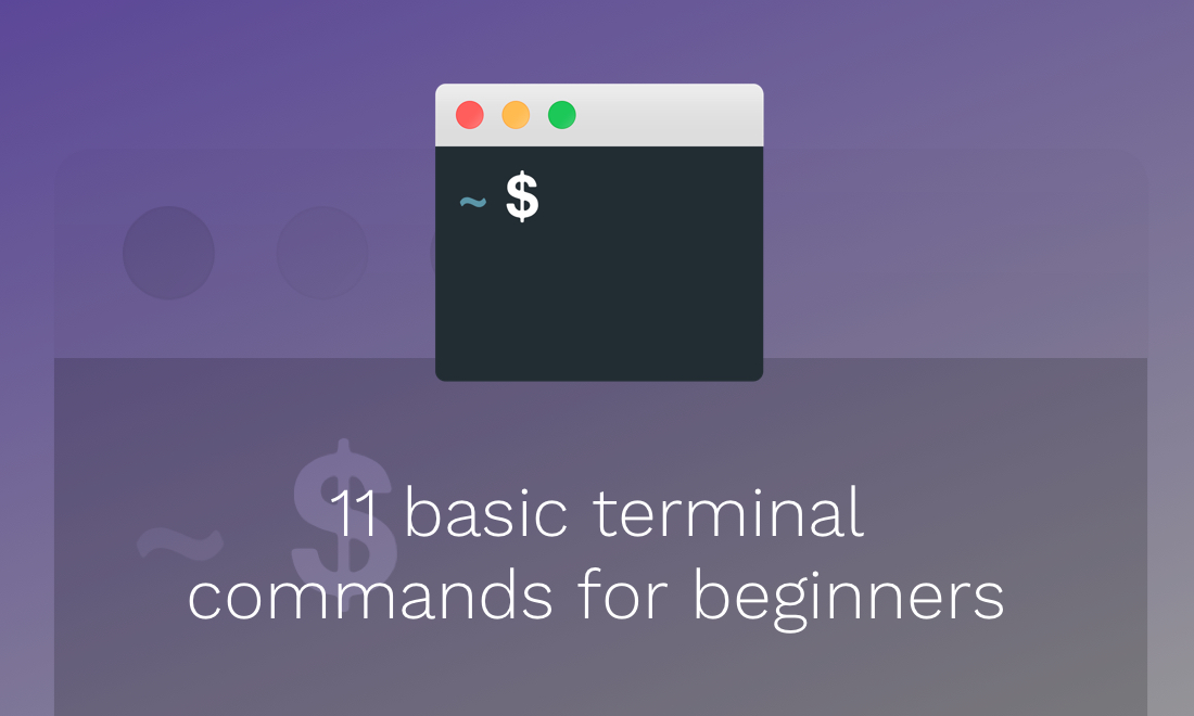 11 basic terminal commands for beginners